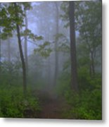Pathway Through The Fog Metal Print