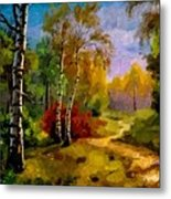 Pathway Through The Forest H A Metal Print