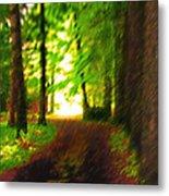 Pathway To Light Metal Print