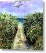 Pathway To The Shore Metal Print