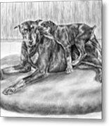 Patience - Doberman Pinscher And Puppy Print Metal Print by Kelli Swan