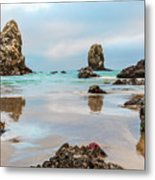 Patrick And Friends Visit Cannon Beach Metal Print