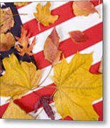 Patriotic Autumn Colors Metal Print
