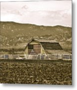 Patriotism And Barn Metal Print