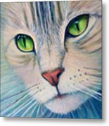 Pats Cat Metal Print