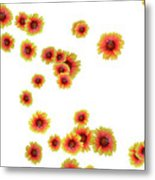 Patterns From Flowers Metal Print