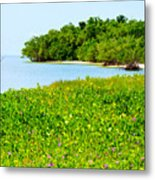 Pavilion Point Metal Print