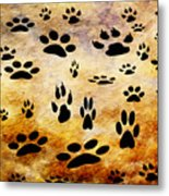 Paw Prints Metal Print by Andee Design
