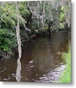 Paynes Creek Metal Print