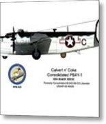 Pb4y-1 Liberator Profile Metal Print
