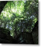 Peace All Around Metal Print