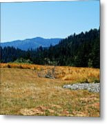 Peace And Solitude Metal Print