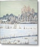 Peace Of The Winter Metal Print