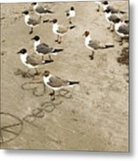 Peace On The Beach Metal Print