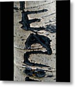 Peace Written In The Trees 4 Metal Print