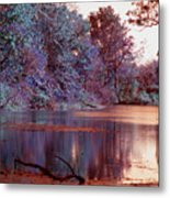 Peaceful In Infrared No2 Metal Print
