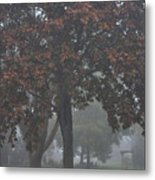 Peaceful Morning Mist Metal Print