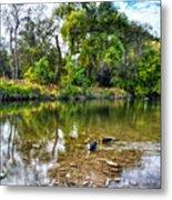 Peaceful Morning On Cibolo Creek Metal Print