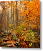 Peaceful Pathway Metal Print by Kathy Jennings