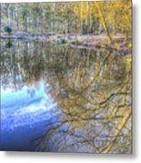 Peaceful Pond Reflections  Metal Print