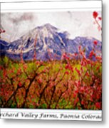 Peach Blossoms And Mount Lamborn Orchard Valley Farms Metal Print
