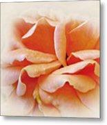 Peach Delight Metal Print by Kaye Menner
