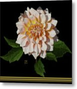 Peach-n-yellow Dahlia Cutout Metal Print