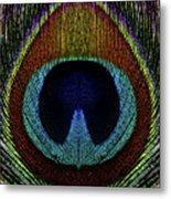 Peacock 1 Metal Print
