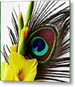 Peacock Feather And Gladiola 3 Metal Print