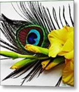Peacock Feather And Gladiola 4 Metal Print