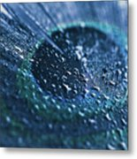 Peacock Feather Macro Waterdrops Metal Print