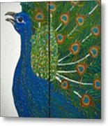 Peacock Iv Metal Print