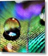 Peacock Jewel Metal Print by Kerry Langel