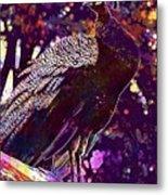 Peacock Lisbon Castle Animal Life  Metal Print