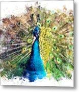 Peacock Watercolor Painting Metal Print