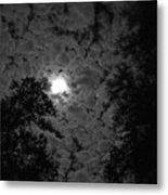 Peek And Glow 2 Metal Print