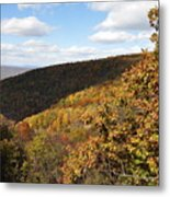 Peak Foliage Metal Print