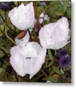 Pearlblossoms Metal Print