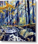 Pebble Creek Autumn Metal Print