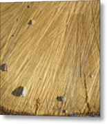 Pebbles And Texture On A Crosscut Log Metal Print