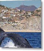 Pedregal - Cabo San Lucas Metal Print