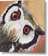Peekaboo Owl Metal Print