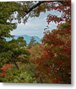 Peeking At The Smokies Metal Print