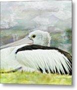 Pelican Art 0006 Metal Print