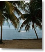 Pelican Beach Belize Metal Print