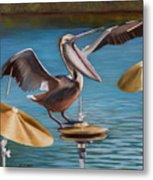 Pelican Crash Metal Print