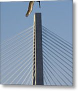 Pelican Diving Arthur Ravenel Jr Bridge Over The Cooper River In Charleston South Carolina Metal Print