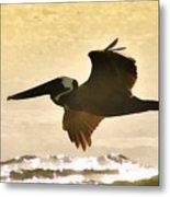 Pelican Patrol Metal Print