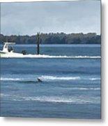 Pelican Porpoise And Fishermen Metal Print