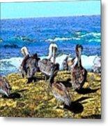 Pelican Rock Metal Print